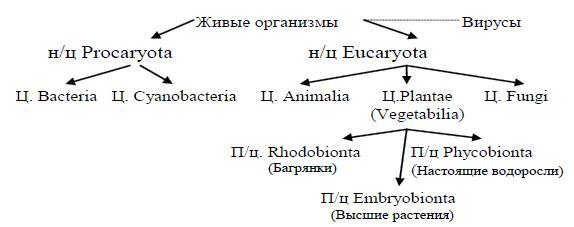 images2-pologenie-rastenij-v-sistemah-organicheskogo-mira-thumb.jpg