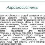 География сельского хозяйства, зерновое хозяйство России