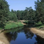 Происхождение названия реки Гусь