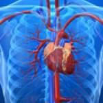 Приобретенные пороки сердца: симптомы, диагностика и лечение