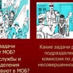 Милиция общественной безопасности