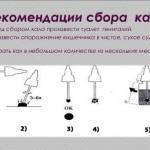 Анализ кала на яйца глист (гельминтов)