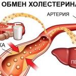 Коэффициент атерогенности – что это такое